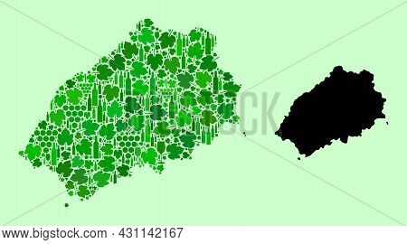 Vector Map Of Saint Helena Island. Mosaic Of Green Grapes, Wine Bottles. Map Of Saint Helena Island