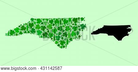 Vector Map Of North Carolina State. Combination Of Green Grape Leaves, Wine Bottles. Map Of North Ca