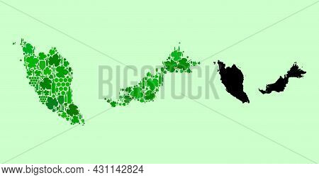 Vector Map Of Malaysia. Collage Of Green Grape Leaves, Wine Bottles. Map Of Malaysia Collage Formed