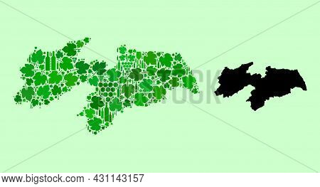 Vector Map Of Paraiba State. Collage Of Green Grape Leaves, Wine Bottles. Map Of Paraiba State Colla