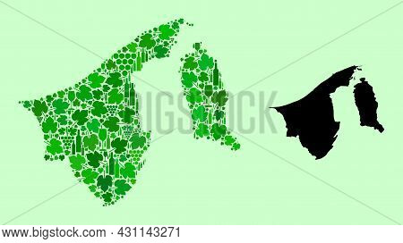 Vector Map Of Brunei. Collage Of Green Grape Leaves, Wine Bottles. Map Of Brunei Collage Created Wit