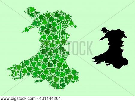 Vector Map Of Wales. Collage Of Green Grape Leaves, Wine Bottles. Map Of Wales Collage Designed From
