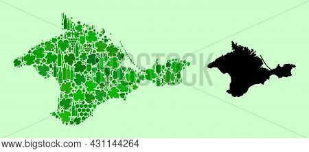 Vector Map Of Crimea. Collage Of Green Grape Leaves, Wine Bottles. Map Of Crimea Collage Formed From