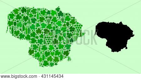 Vector Map Of Lithuania. Collage Of Green Grape Leaves, Wine Bottles. Map Of Lithuania Collage Creat