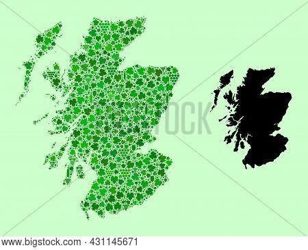 Vector Map Of Scotland. Mosaic Of Green Grape Leaves, Wine Bottles. Map Of Scotland Mosaic Designed