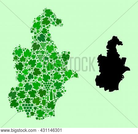 Vector Map Of Tianjin Municipality. Combination Of Green Grape Leaves, Wine Bottles. Map Of Tianjin