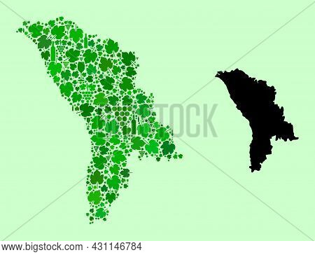 Vector Map Of Moldova. Mosaic Of Green Grapes, Wine Bottles. Map Of Moldova Mosaic Formed With Bottl