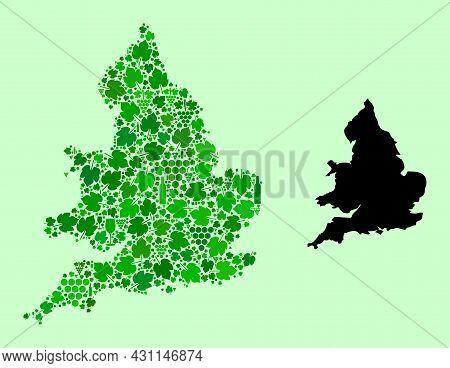 Vector Map Of England. Mosaic Of Green Grapes, Wine Bottles. Map Of England Mosaic Designed From Bot