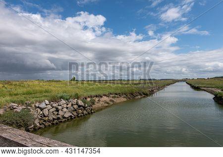 Knokke-heist, Flanders, Belgium - August 6, 2021: Zwin Nature Reserve. Flat Green Landscape With Bac