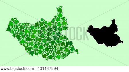 Vector Map Of South Sudan. Collage Of Green Grape Leaves, Wine Bottles. Map Of South Sudan Collage C