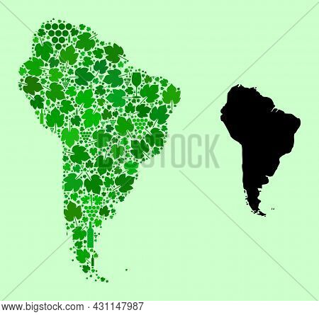 Vector Map Of South America. Combination Of Green Grape Leaves, Wine Bottles. Map Of South America C
