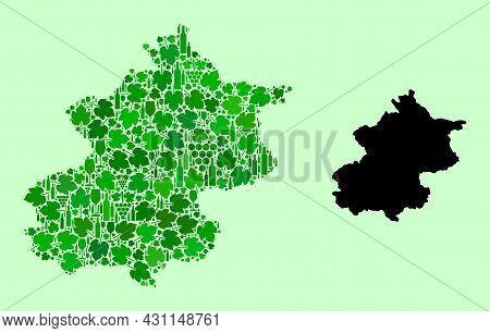 Vector Map Of Beijing Municipality. Mosaic Of Green Grape Leaves, Wine Bottles. Map Of Beijing Munic