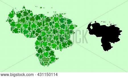 Vector Map Of Venezuela. Mosaic Of Green Grape Leaves, Wine Bottles. Map Of Venezuela Mosaic Designe