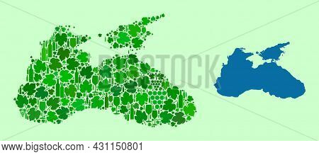 Vector Map Of Black Sea. Collage Of Green Grape Leaves, Wine Bottles. Map Of Black Sea Collage Creat