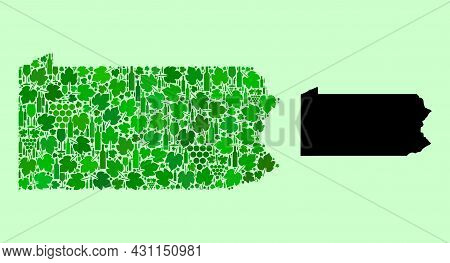 Vector Map Of Pennsylvania State. Composition Of Green Grape Leaves, Wine Bottles. Map Of Pennsylvan