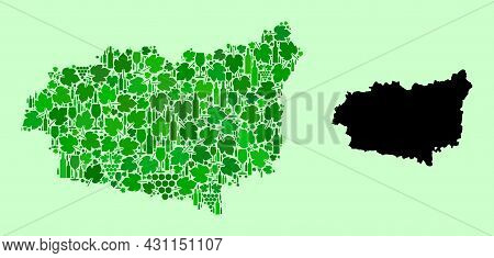 Vector Map Of Leon Province. Mosaic Of Green Grapes, Wine Bottles. Map Of Leon Province Mosaic Compo