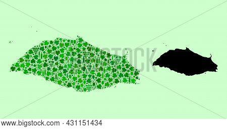 Vector Map Of Isla La Tortuga. Combination Of Green Grape Leaves, Wine Bottles. Map Of Isla La Tortu