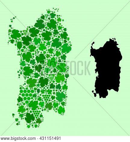 Vector Map Of Sardinia Region. Composition Of Green Grape Leaves, Wine Bottles. Map Of Sardinia Regi