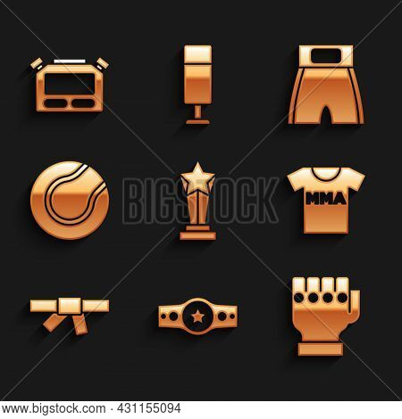 Set Award Cup, Boxing Belt, Mma Glove, T-shirt With Fight Club, Black Karate, Tennis Ball, Short And