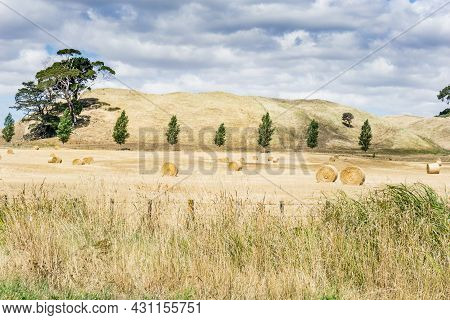 Farm Land Along Road With Rolls Of Cut And Baled Hay In Field Of Golden Grassland Dry Low Hills And