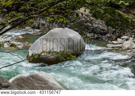 Rock detail in the stream surrounds by forest in the Swiss Alps. Nobody inside