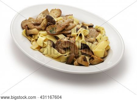 homemade pappardelle pasta with porcini mushrooms isolated on white background