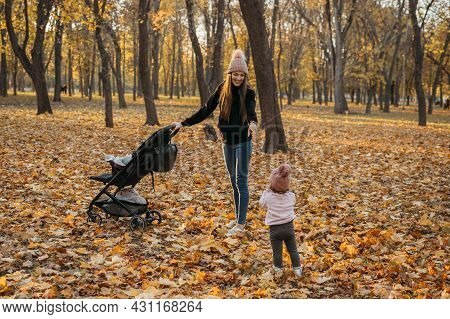 Mom And Toddler Baby Daughter Are Walking In Autumn Park With Baby Stroller. Happy Family Mom And To