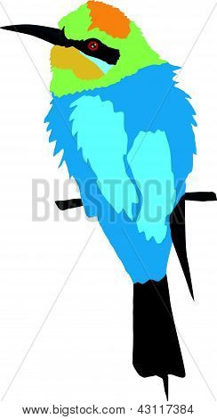 vector, coloured illustration of the bird series, bee eater poster