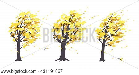 Set Of Old Trees With Dark Trunks And Yellow Leaves Isolated On White. Autumn Season. Deciduous Tree