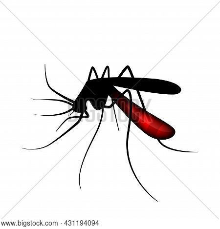 Mosquito Silhouette, Blood Sucking Mosquitoes Isolated On White, Illustration Mosquito For Clip Art