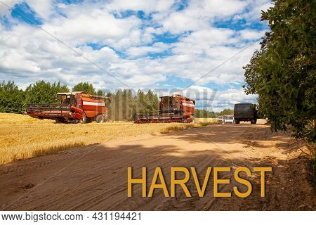 Harvest. Combine Harvesters In The Field For Harvesting Wheat. Special Equipment On The Field. Road