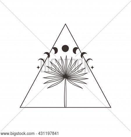 Divine Beauty Premade Logo Design. Black Palm