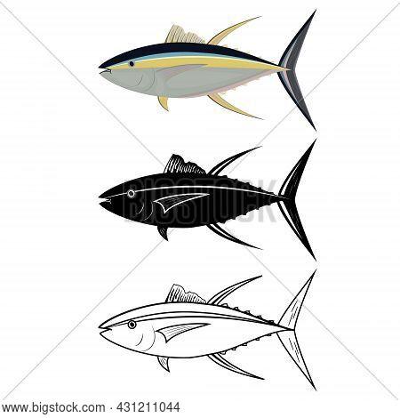 Tuna Fish In Color, Outline And Stencil, Color Vector Illustration.