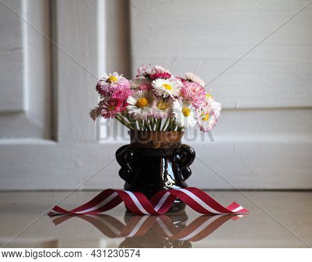 Red White Red Ribbon In The Colors Of The Latvian National Flag. Bouquet Of Daisies In A Vase. Latvi