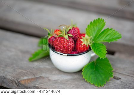 Green Leaves And Large Strawberries In A White Mug