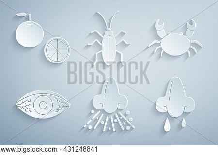 Set Runny Nose, Crab, Reddish Eye Allergic Conjunctivitis, Cockroach And Orange Fruit Icon. Vector