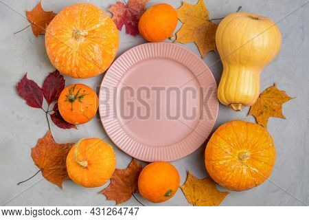 Close-up Flat Lay Of Empty Pink Plate Surrounded By Ripe Little Pumpkins And Autumn Leaves On Rough