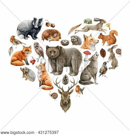 Forest Animals And Birds Heart Shape. Wildlife Collection. Hand Drawn Natural Wild Forest Animals Se