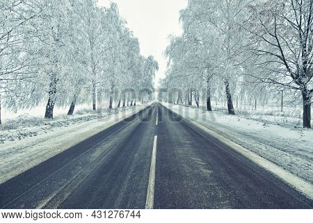 Rural Frosted Icy Road Among Trees After Snowstorm Wintertime