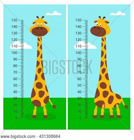 Vector Cartoon Cute Giraffe With Ruler, Growth Meter. Baby Set. Full Length Giraffe On Green Grass M