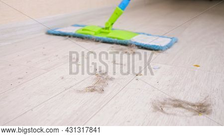 Cleaning Modern Wooden Floor From Shreds Of Hair, Dust And Dirt With Soft Mop In Room During Tidying