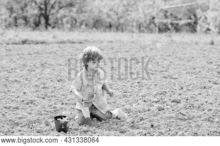 Planting In Field. Little Helper In Garden. Boy Sit On Ground Planting Flower In Field. Fun Time At