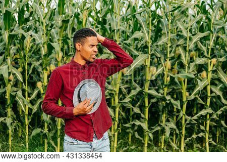 Young Handsome African American Farmer Man Wearing Hat Over Corn Field Background With Hand On Head