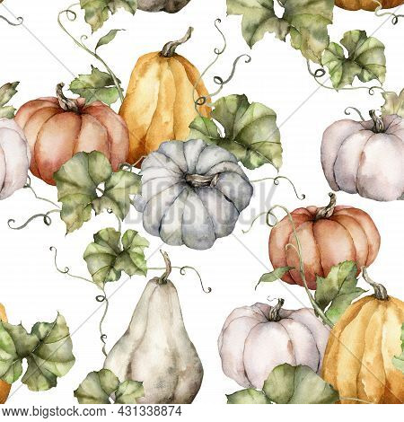 Watercolor Autumn Seamless Pattern Of Gray, Red, Orange Pumpkins And Leaves. Hand Painted Gourds Iso