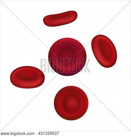 Vector Illustration Of Red Blood Cells Or Erythrocytes