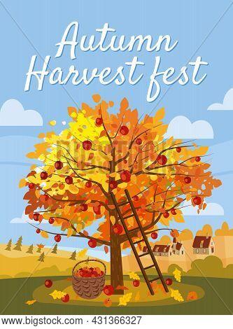 Autumn Harvest Fest. Apple Tree With Basket Of Apples, Ladder, Rural Landscape. Fall, Harvest, Ripe