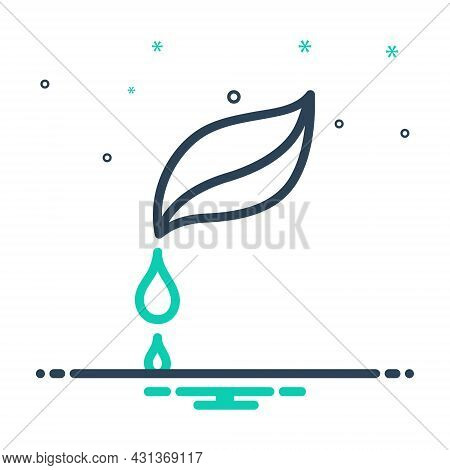 Mix Icon For Pure Droplet Water Clean Drinkable Fresh Beverage Nature Drop Leaf