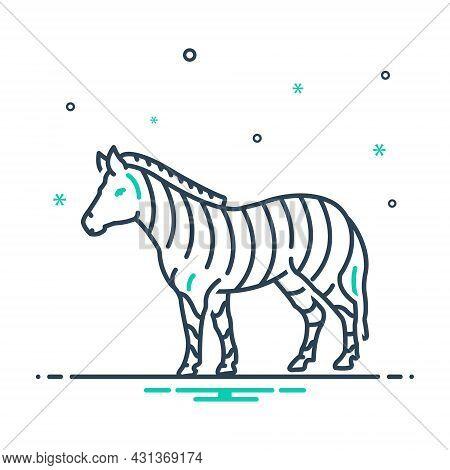 Mix Icon For Zebra Black-and-white Fauna Head Herbivore Nature Animal Jungle Wildlife Zoo