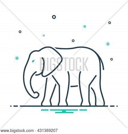Mix Icon For Elephant Herbivorous Trunk Strong Pet Dangerous Large Wild Nature Animal Jungle Wildlif