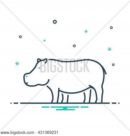 Mix Icon For Hippopotamus Semi-aquatic-mammal Mud Omnivorous Nature Animal Jungle Wildlife